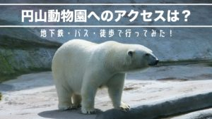円山動物園地下鉄バス徒歩のアクセス方法