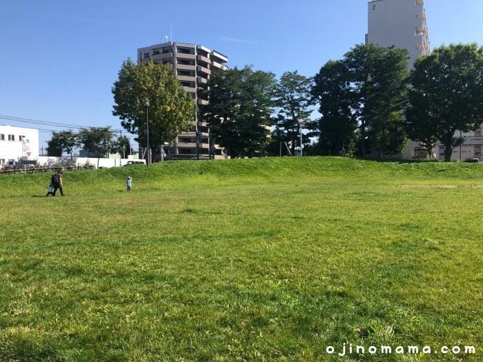 白石区東札幌公園芝生