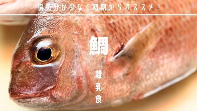 離乳食鯛の初期中期後期の調理法とメニュー
