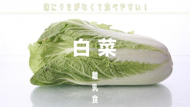 離乳食白菜の初期中期後期の調理法とメニュー