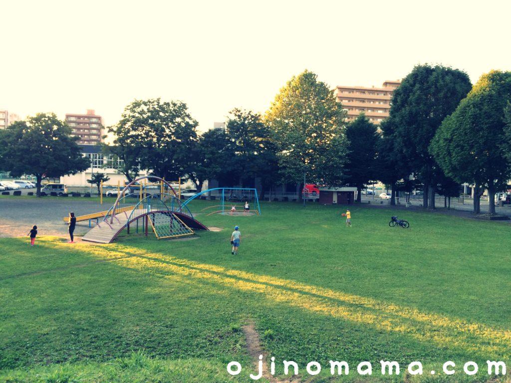 札幌市豊平区むつみ公園全体