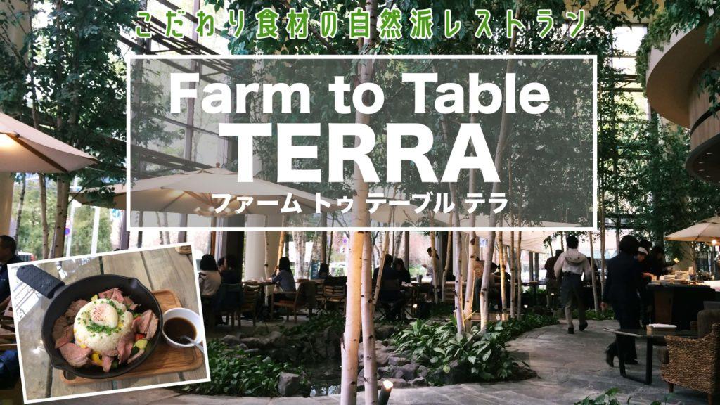 札幌子供連れランチファームトゥテーブルテラ