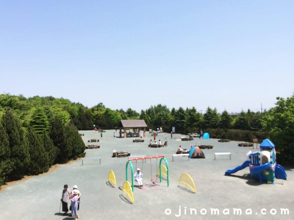 札幌川下公園バーベキュー