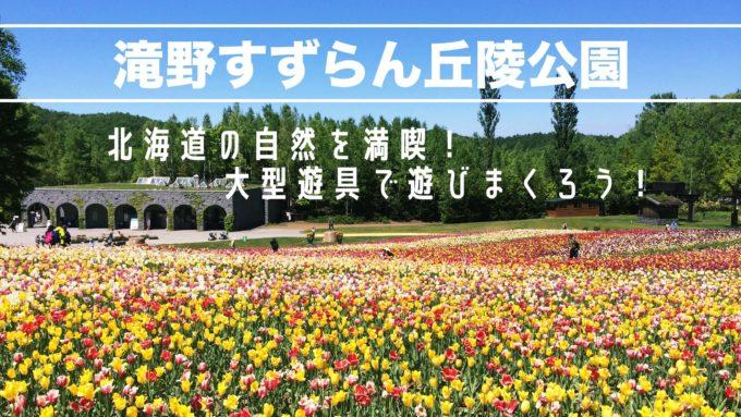 札幌子供連れ滝野すずらん公園遊具の紹介