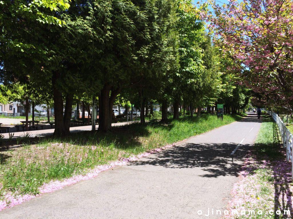 札幌白石東冒険公園サイクリングロード1