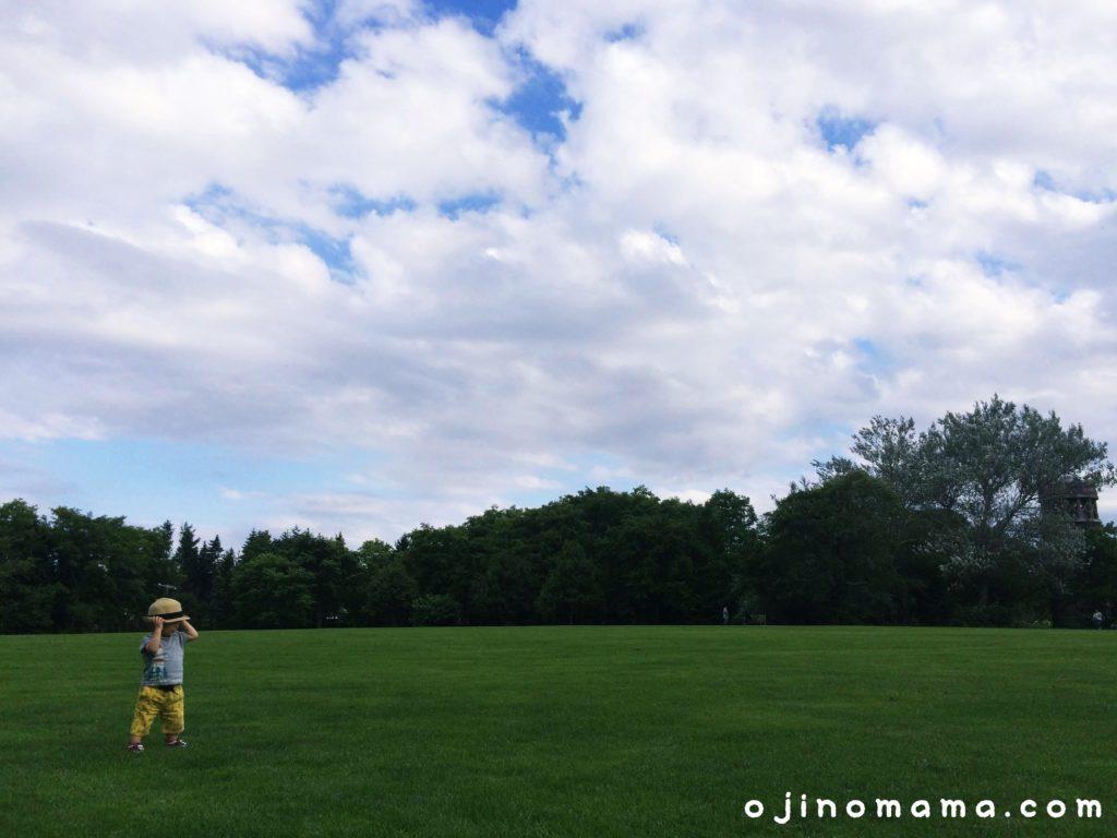 百合が原公園芝生
