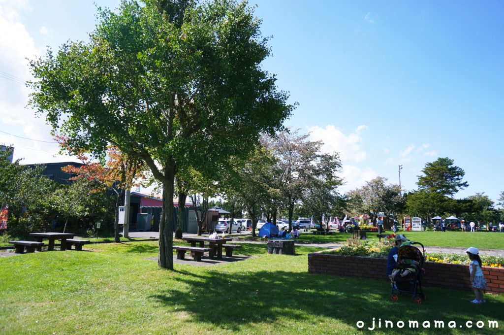 栗山公園芝生とテーブルベンチ