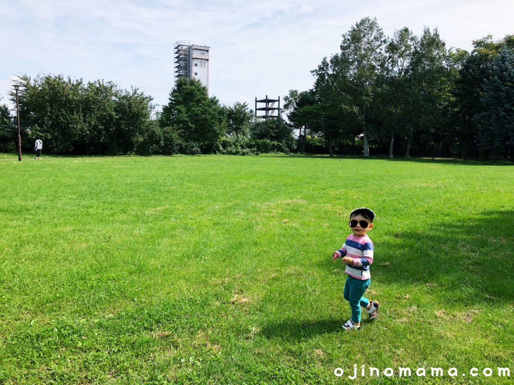 発寒西陵公園芝生