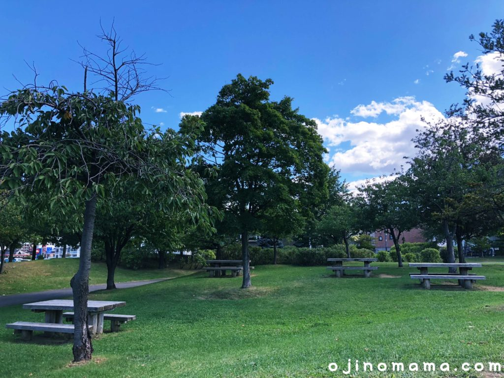 西野グリーン公園芝生