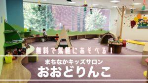 札幌子育てサロン室内遊び場おおどりんこの紹介