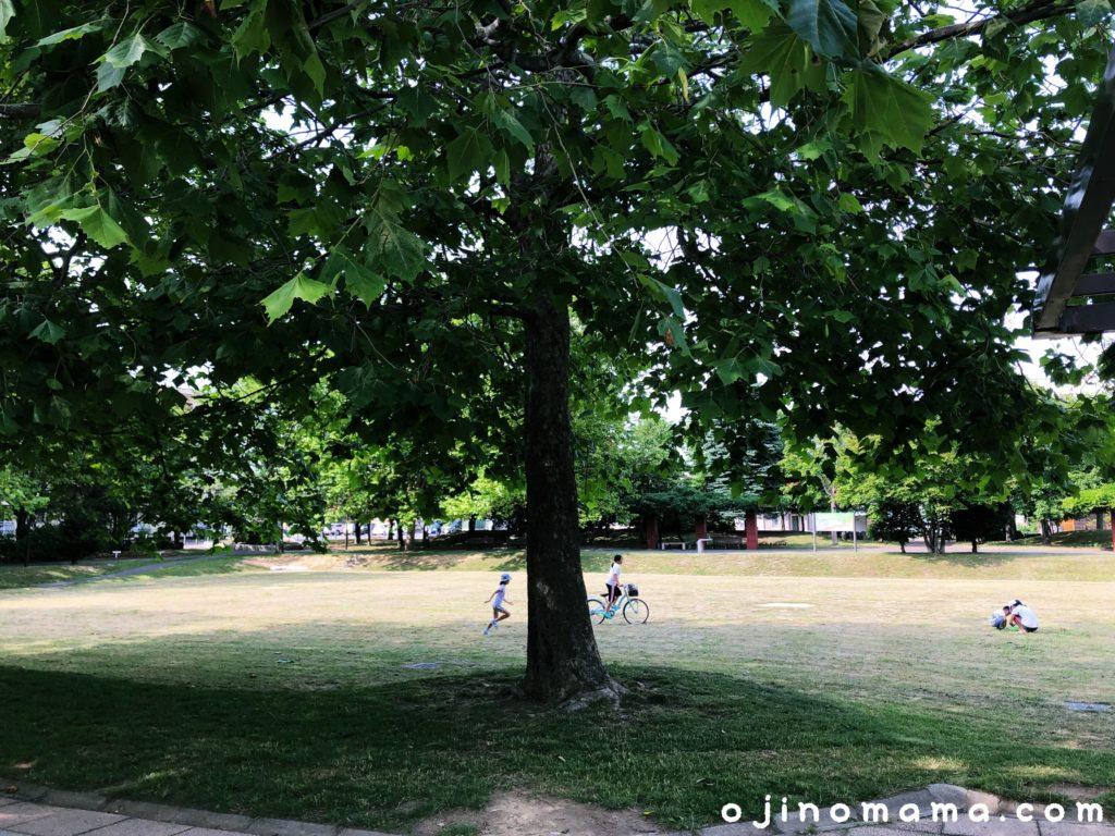 札幌市東区苗穂グリーン公園芝生広場-min
