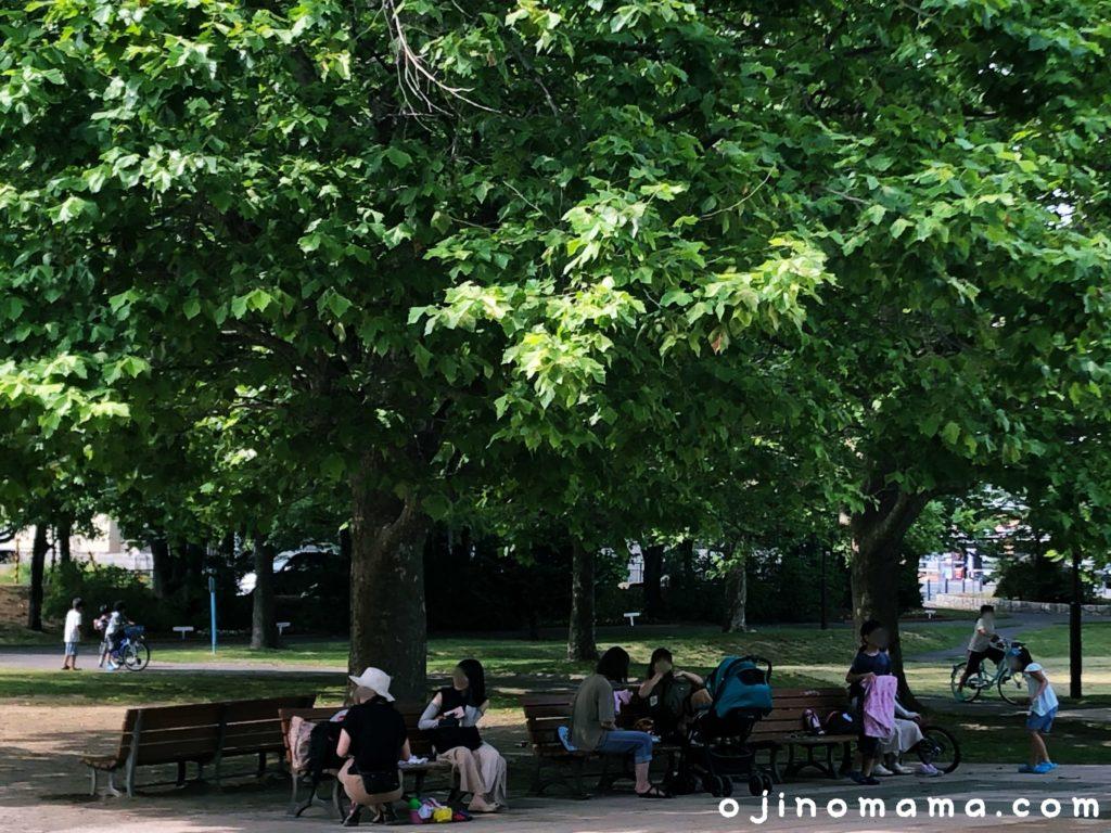 札幌市苗穂グリーン公園ベンチ