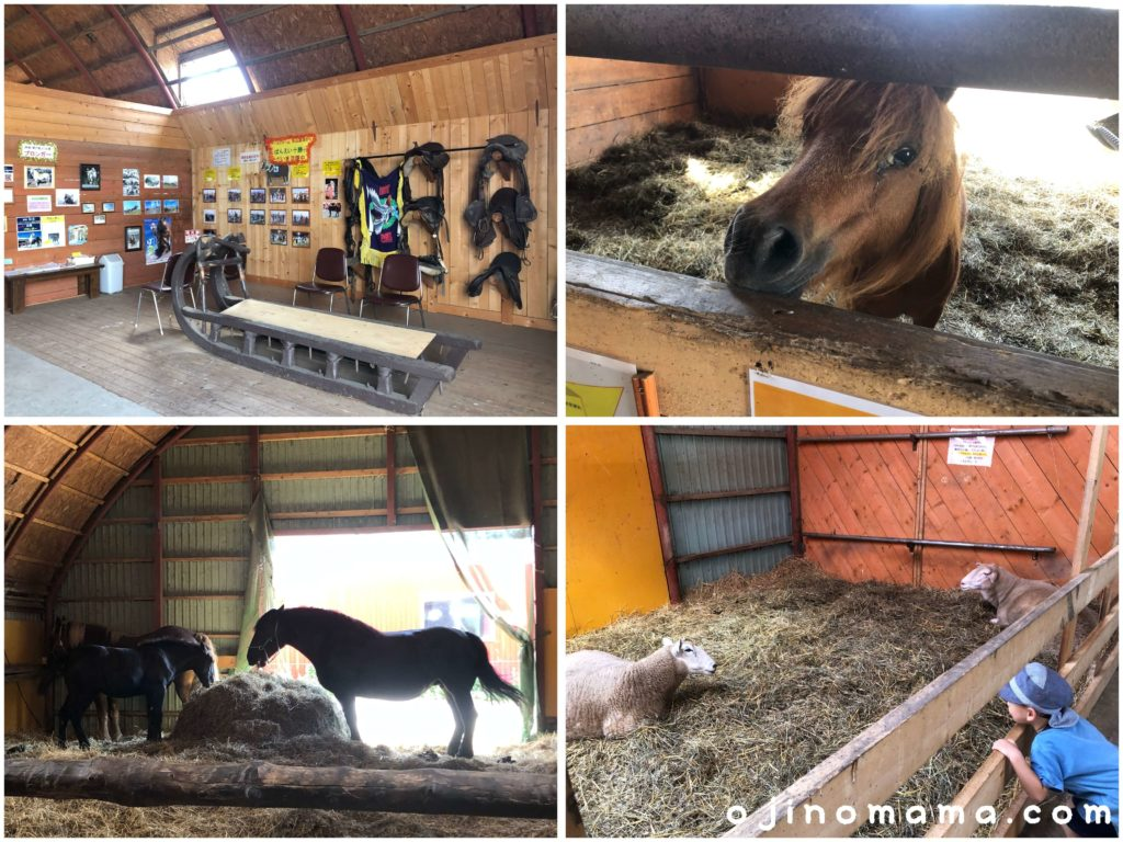 アースドリーム角山農園馬舎