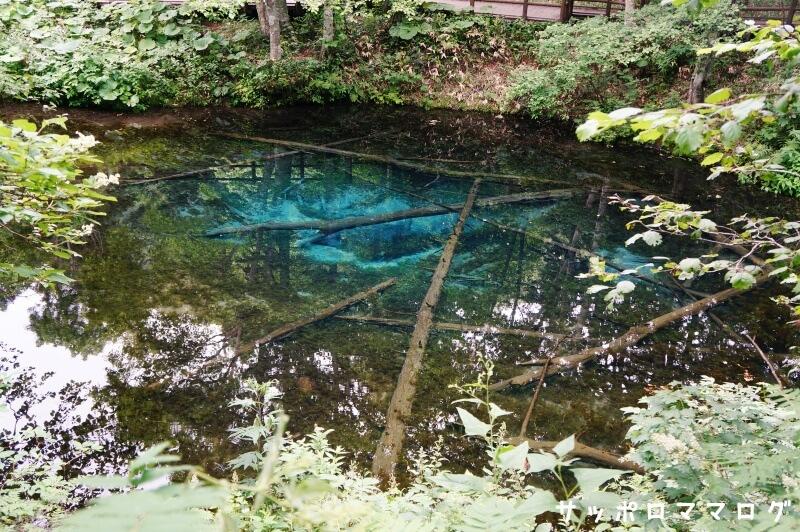知床観光清里町神の子池