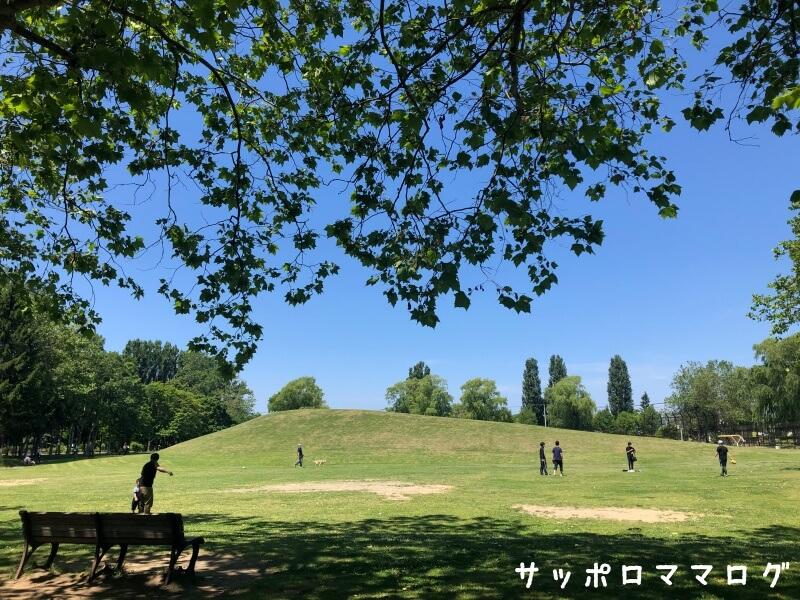 伏古公園芝生と丘