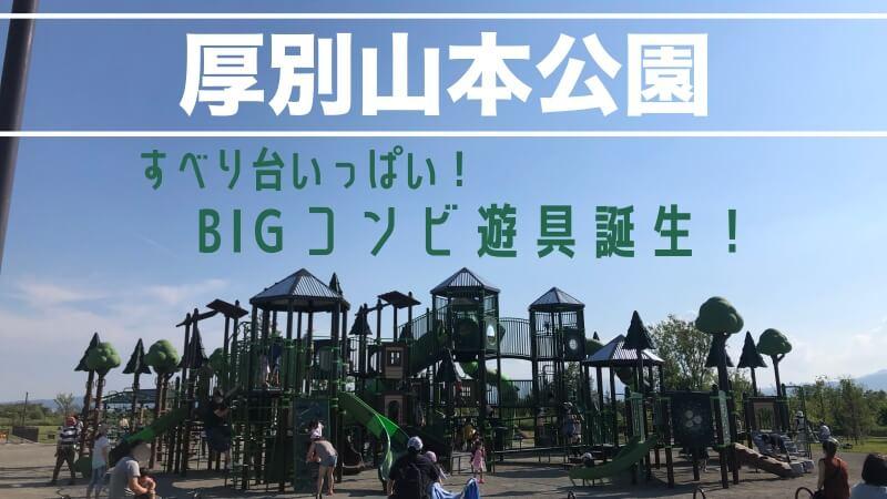札幌厚別山本公園遊具の紹介
